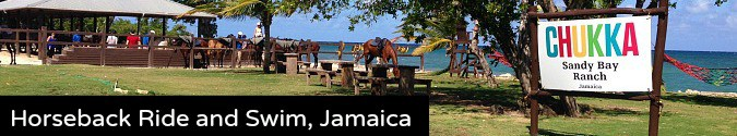 horseback ride and swim negril jamaica