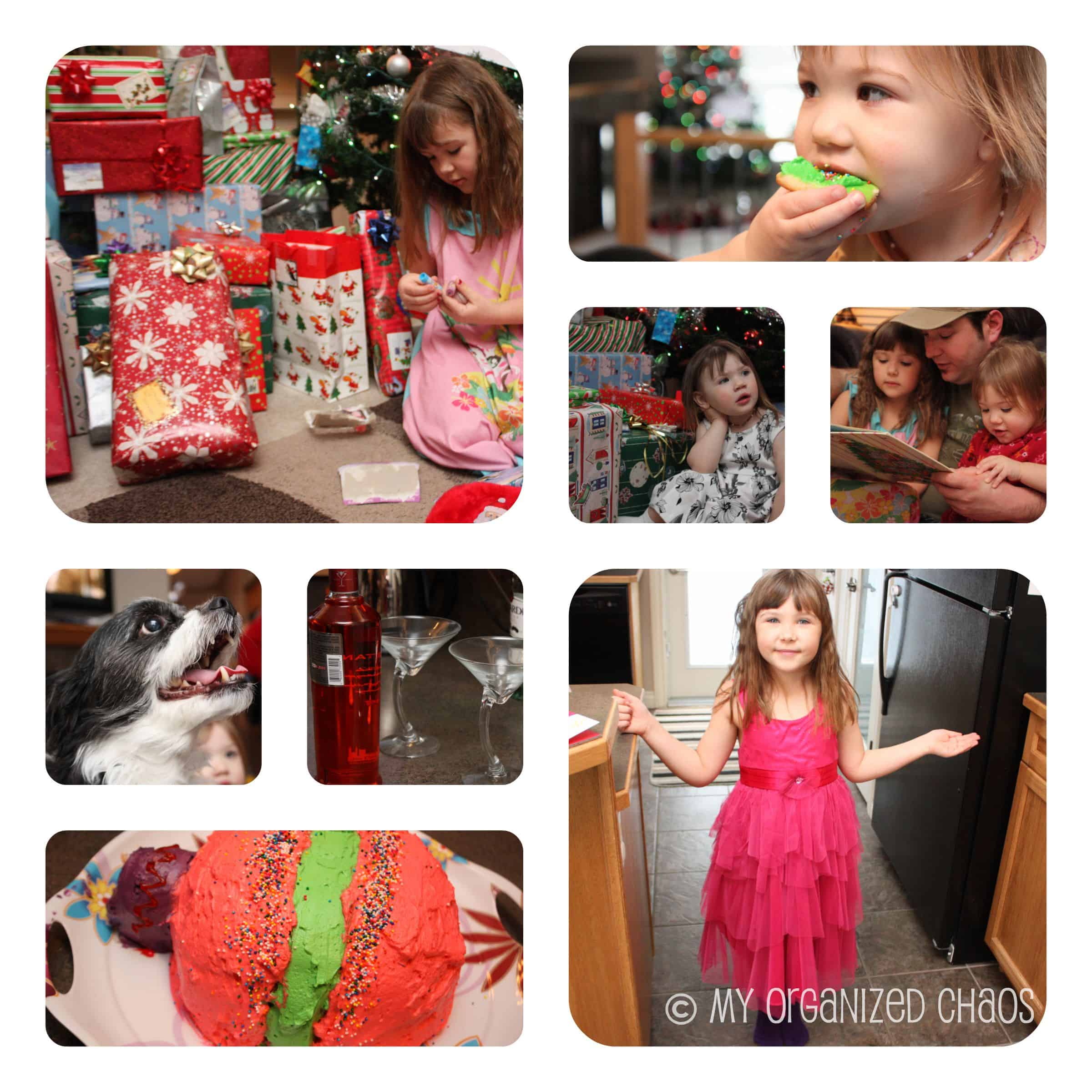 Wordless Wednesday ~ Holiday Chaos
