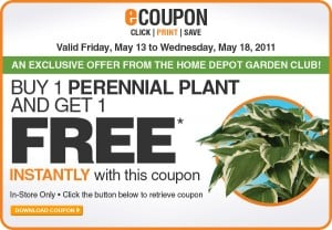 Home Depot Canada ~ Buy 1 Perennial, Get 1 Free with Coupon