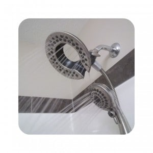 Delta In2ition Shower Head Review