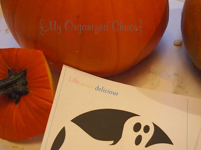 Free Easy Pumpkin Carving Stencils My Organized Chaos