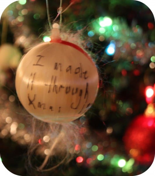 Perfect Ornament {Wordless Wednesday with Linky}