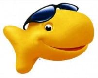Goldfish Moments twitter chat #GoldfishMoments