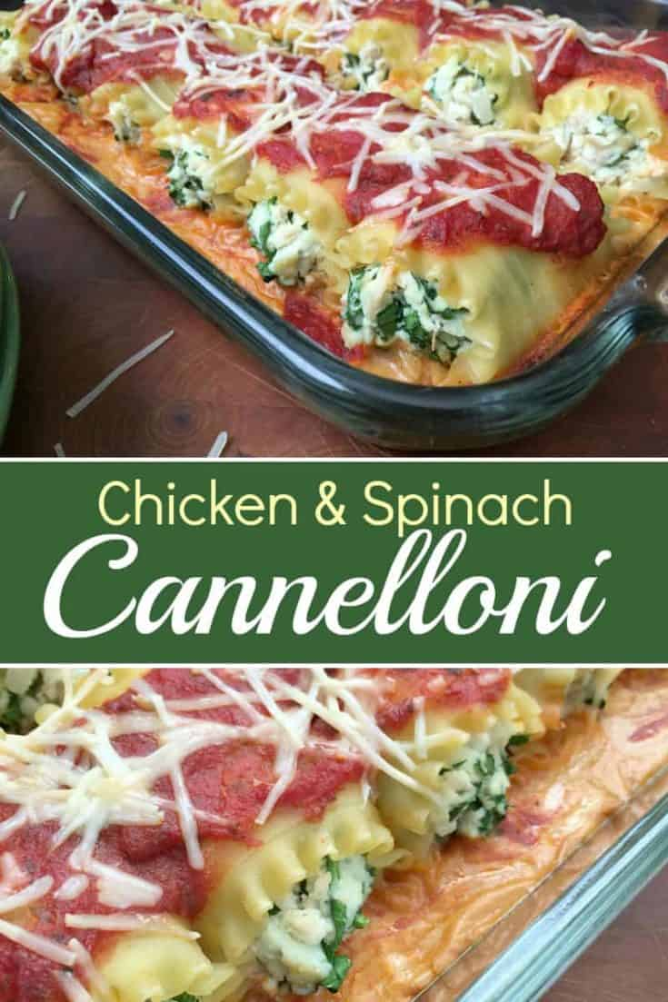 Easy Chicken And Spinach Cannelloni Rolls are like a tasty lasagna rolled up in pasta love. Will you love the filling or the sauce more? #cannelloni #easyrecipe #pastarecipe