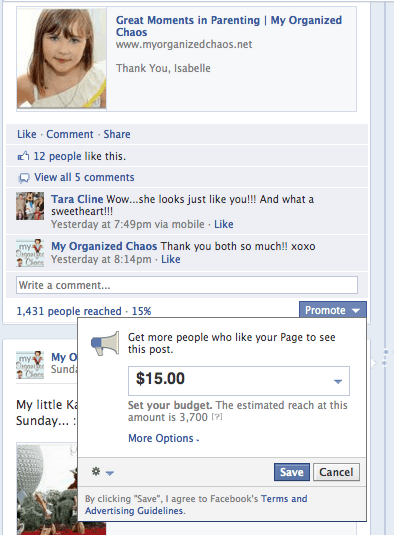 Facebook Charging for Status Updates