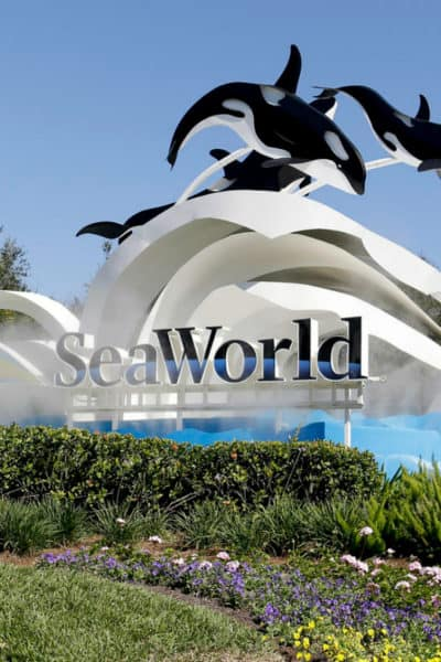 SeaWorld Orlando; Family Travel