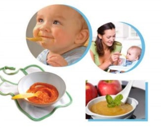 Appliances for Making Baby Food by Hamilton Beach