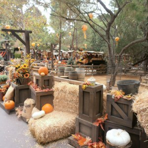 Disneyland's Halloween Celebration