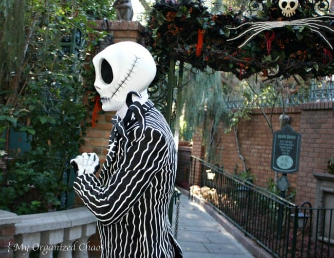jack skellington disneyland Halloween