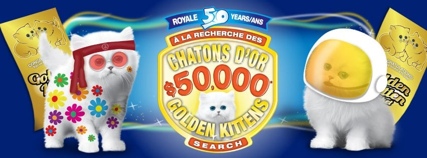 royale kittens contest  Royale Golden Kittens 50th Anniversary Contest: What Would You Do With $50,000?