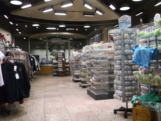 tyrrell gift shop