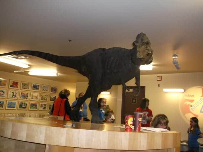 One Dino-Mite Night at the Royal Tyrrell Museum