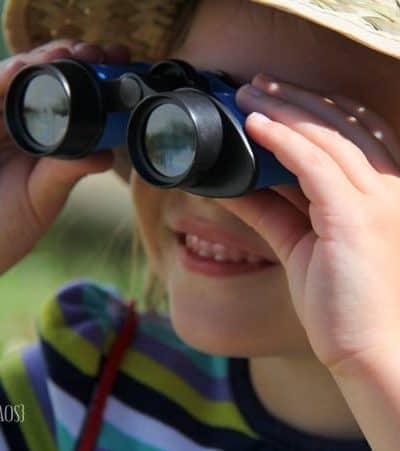Preschool Backyard Adventure