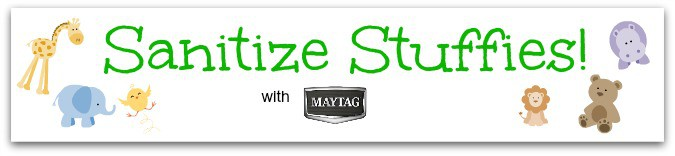 sanitize cycle maytag maxima xl blogger challenge