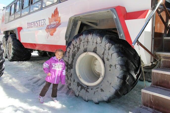 brewster tours explore rockies glacier icefields travel review myorganizedchaos