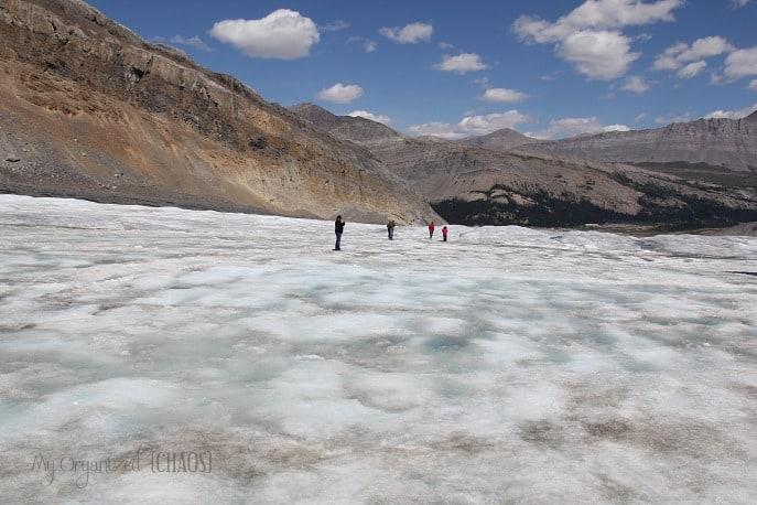 columbia glacier icefields alberta travel myorganizedchaos