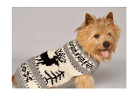 Kyjen Chilly Reindeer Sweater