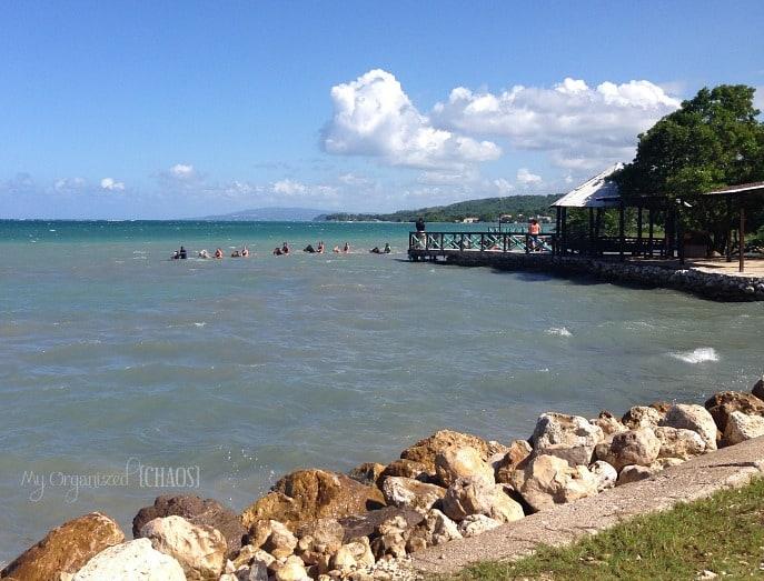 Horseback-Ride-and-Swim_montego-bay-jamaica-travel