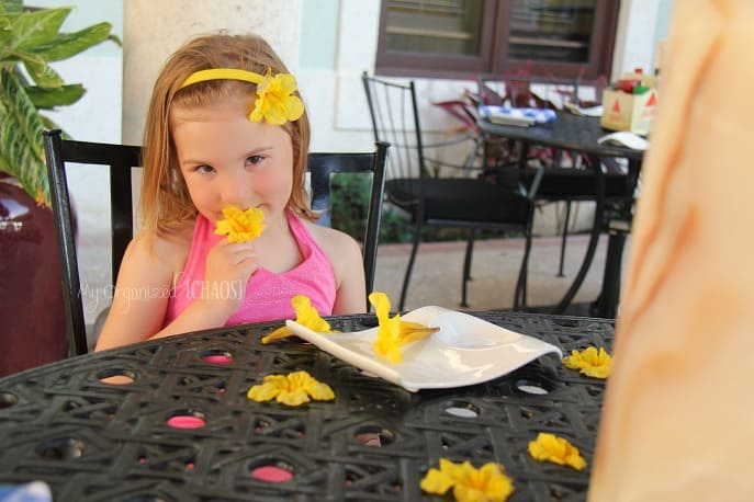 flowers-beaches-turks-caicos-familytravel-blogger