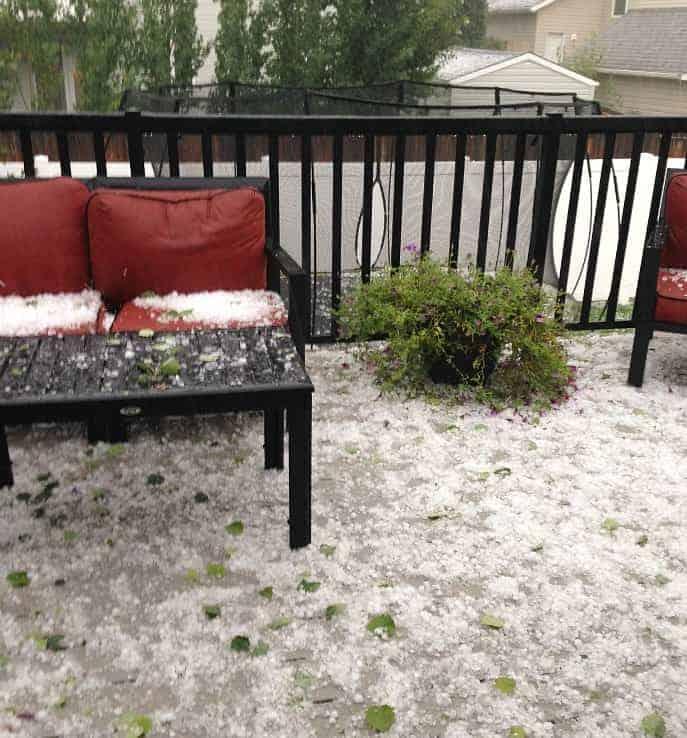 alberta hail