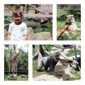 Around the World at The Calgary Zoo