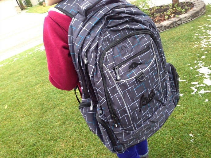 roots backpack best buy