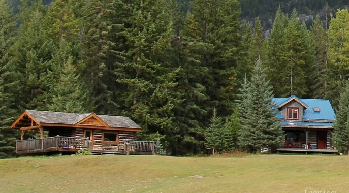 Unwind and Unplug at Nipika Mountain Resort