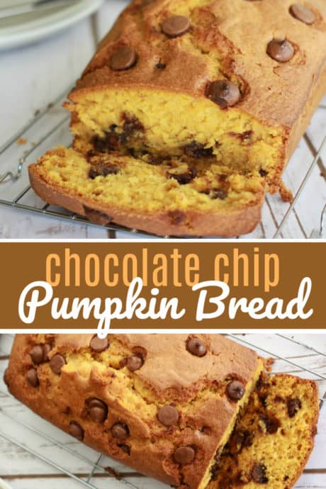 Chocolate Chip Pumpkin Bread, a great fall loaf recipe that uses pumpkin puree and key common ingredients most have on hand. Pumpkin all the things!