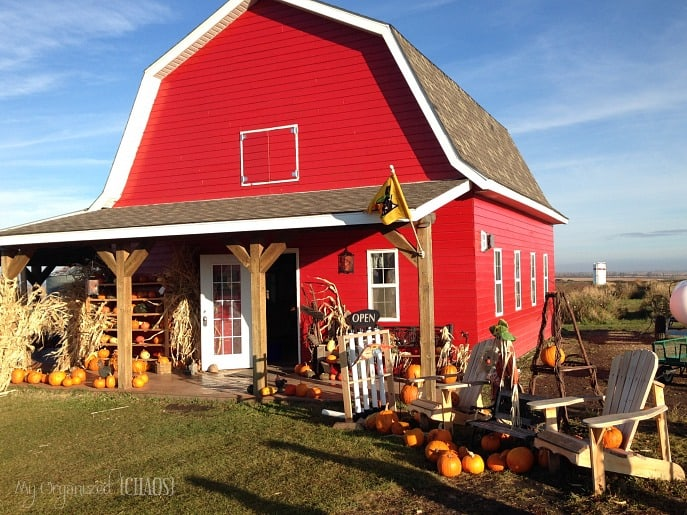 farm-in-fall