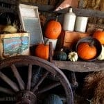 pumpkin-farm-fall
