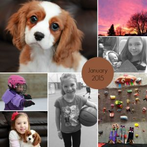 Month In Photos: January 2015