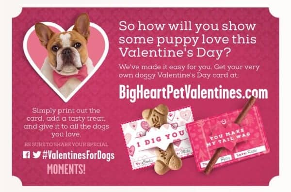 Dog-Valentines-Day