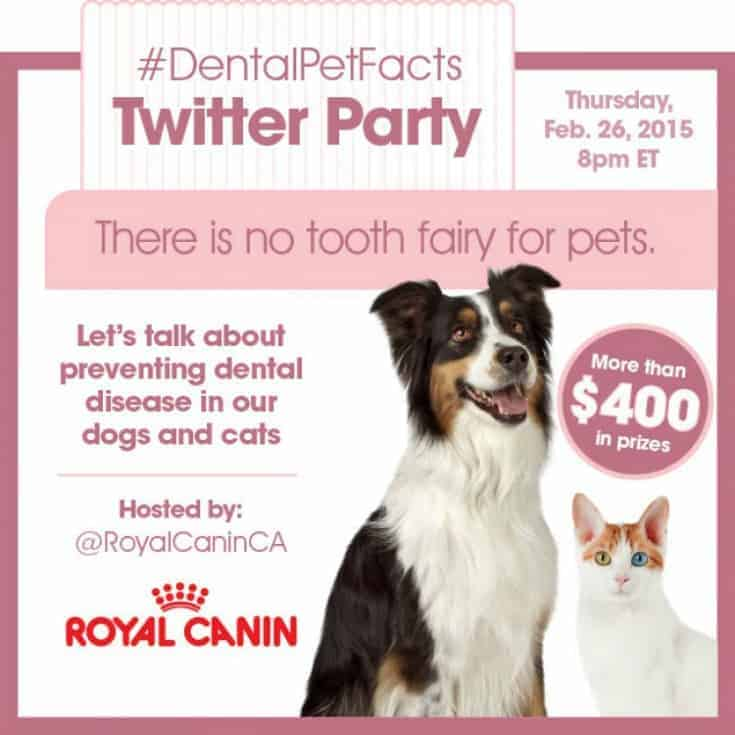 dentalpetfacts twitter party royal canin