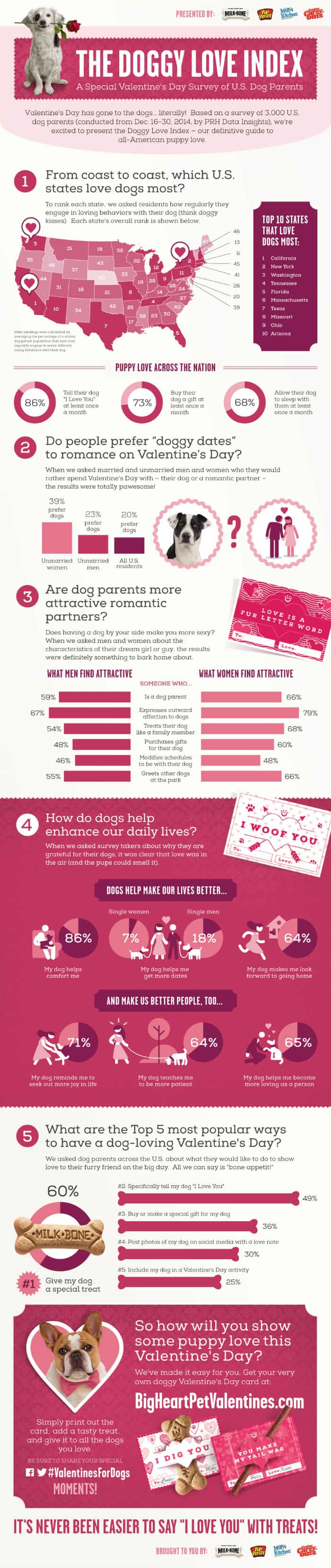 doggylove_infographic