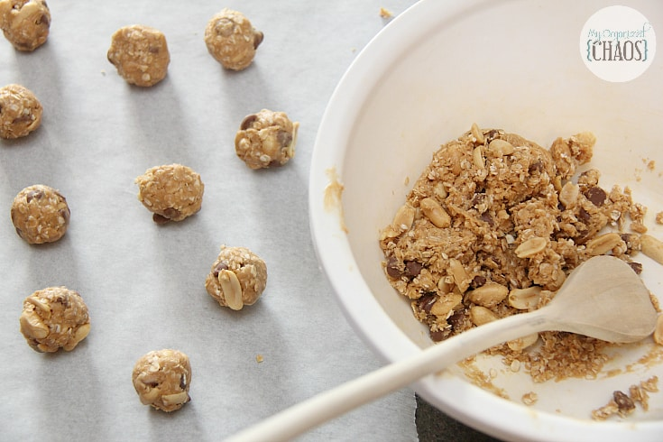 Crunchy Chocolate Chip Peanut Butter Bites snack recipe