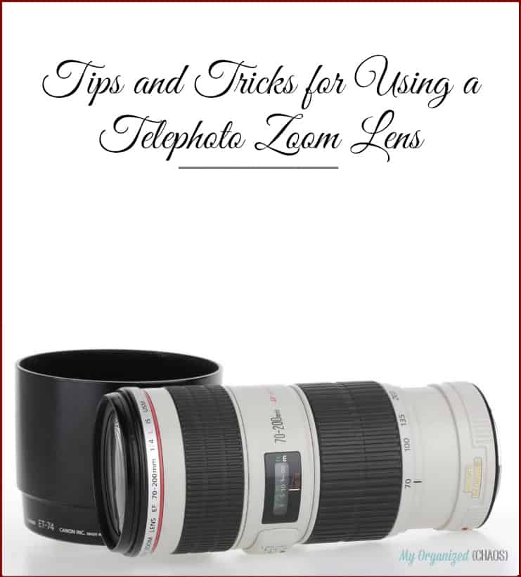 Tips and Tricks for Using a Telephoto Zoom Lens