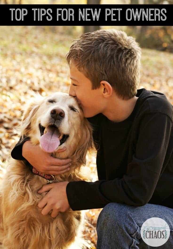 Top Tips for New Pet Owners