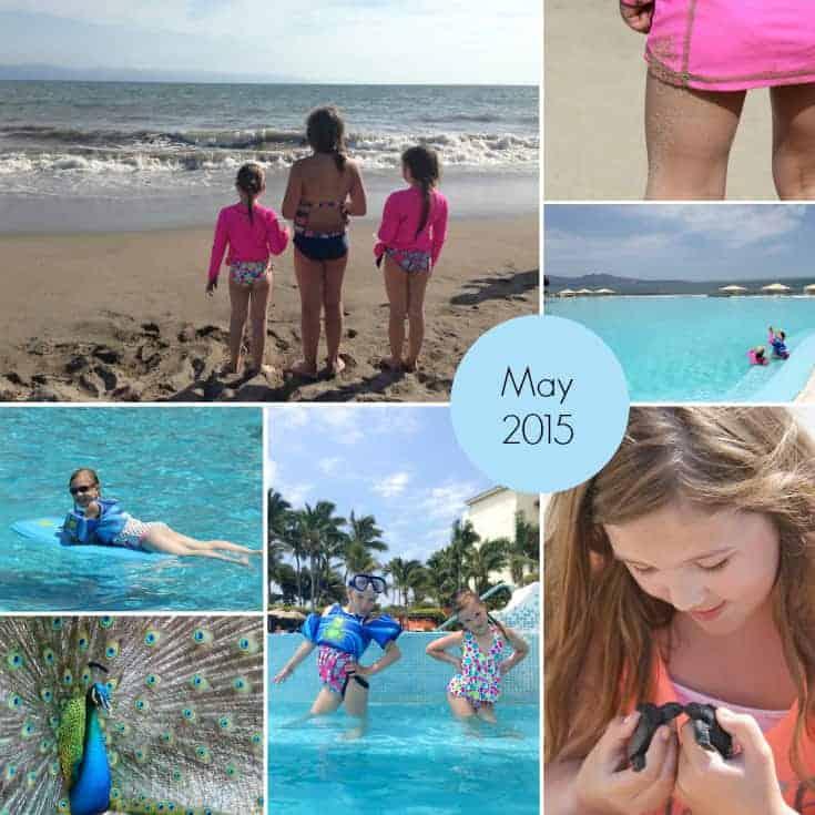 May 2015 month in photos myorganizedchaos