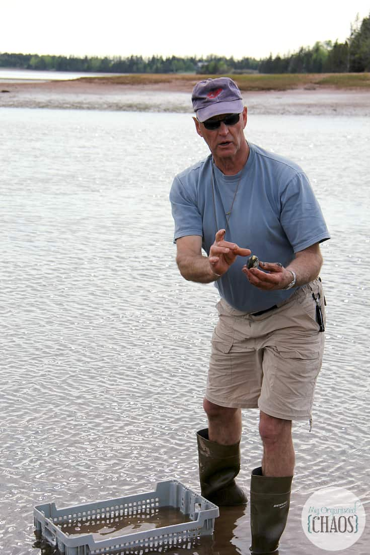 clam diggin experience prince edward island pei canada travel