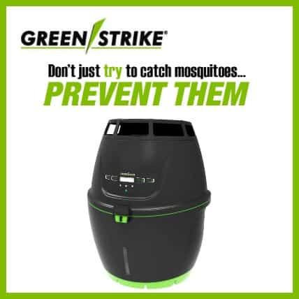green-strike