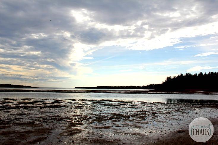 prince edward island clam digging travel canada