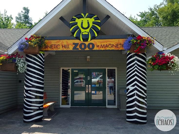 magnetic hill zoo new brunswick
