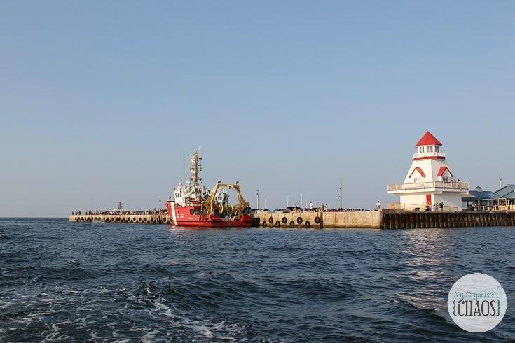 shediac bay cruise lobster tales new brunswick letsgonb