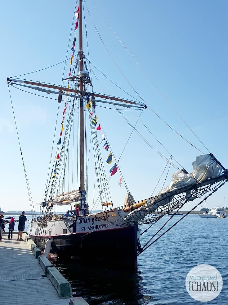 Jolly Breeze Tall Ship Whale Watching new brunswick