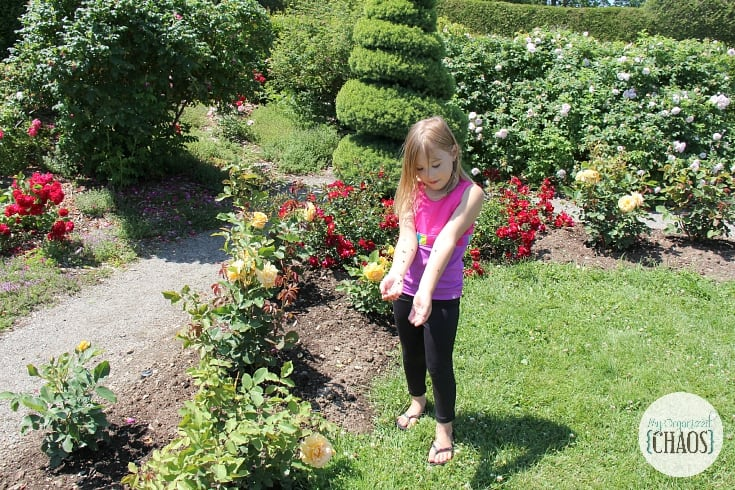 Kingsbrae Gardens new brunswick family travel