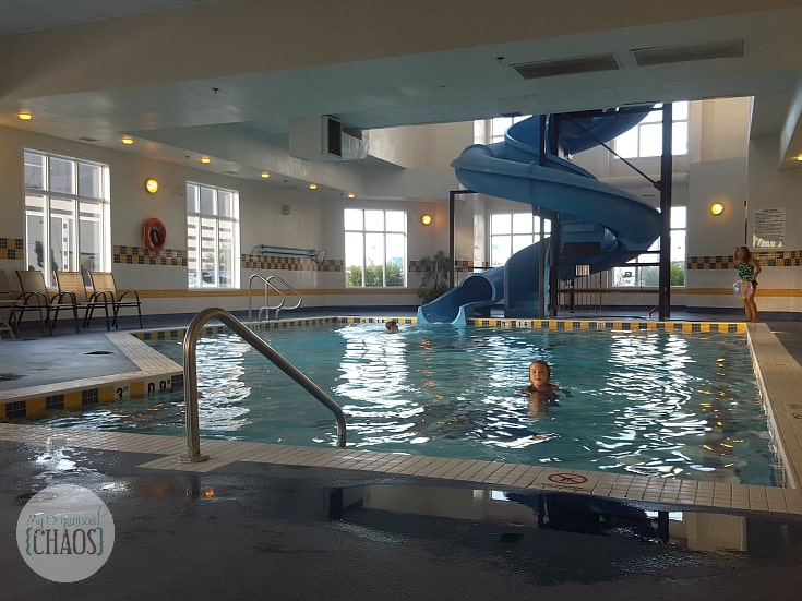 holiday inn express and suites calgary family friendly pool travel