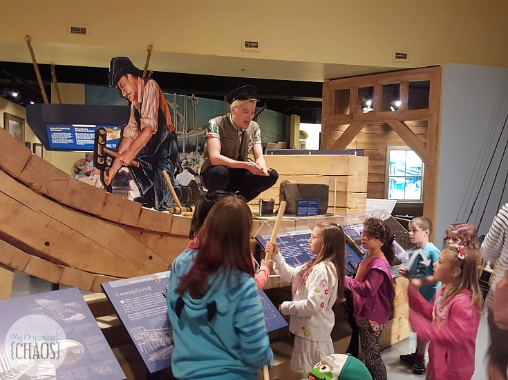 new brunswick museum family travel review