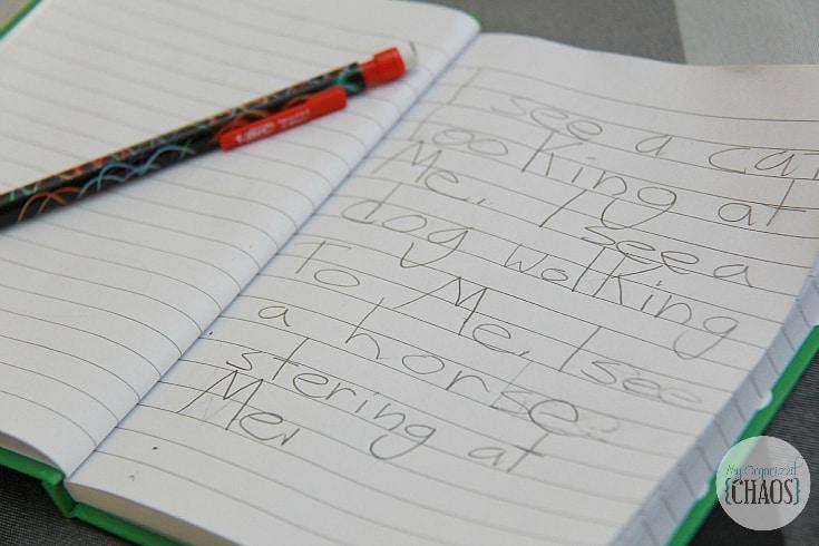 BIC pledge to saving handwriting