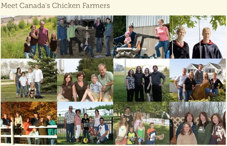 canadas chicken farmers