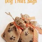 easy halloween dog treat bags diy